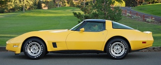 picture of Chevrolet Corvette, 1981, yellow