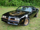picture of Pontiac Trans-Am, 1977, black/gold Bandit