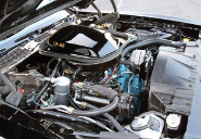 picture of Pontiac Trans-Am, 1977, black/gold Bandit, Pontiac 400 6.6L V8 engine